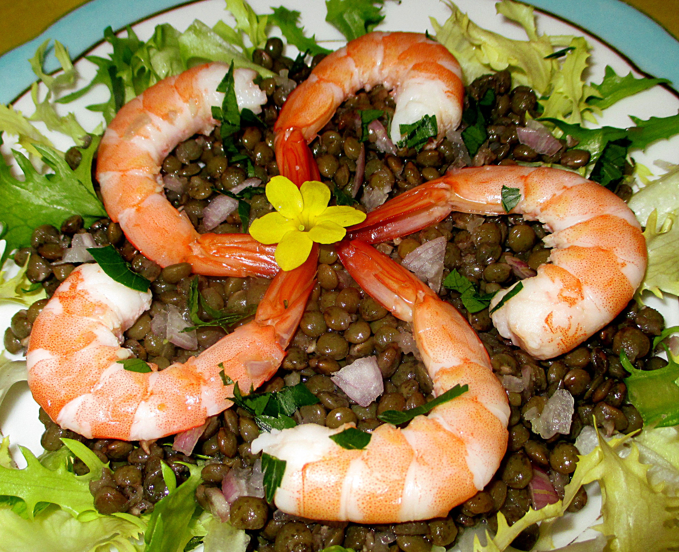 recette salade de lentilles vertes aux crevettes. Black Bedroom Furniture Sets. Home Design Ideas
