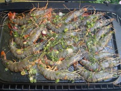 Crevettes roses à la plancha